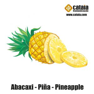 Abacaxi - Piña - Pineapple